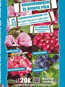 Jó föld rhododendronhoz és más savanyú kémhatást igénylő növényekhez