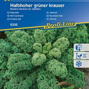 Fodros kel Halbhoher grüner krauser fajta vetőmag