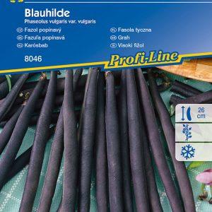 Karósbab Blauhilde fajta vetőmag