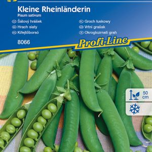 Kifejtőborsó Kleine Rheinländerin fajta vetőmag