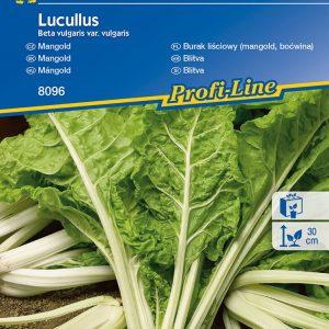 Mángold Lucullus fajta vetőmag