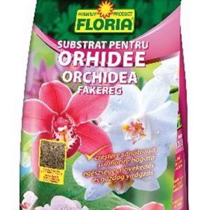 orchidea fakéreg
