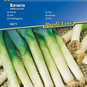 Póréhagyma Bavaria fajta vetőmag