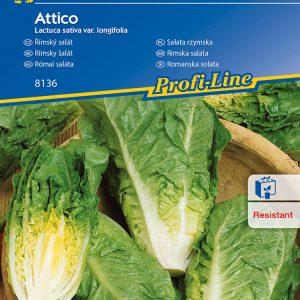 Római saláta Attico fajta vetőmag