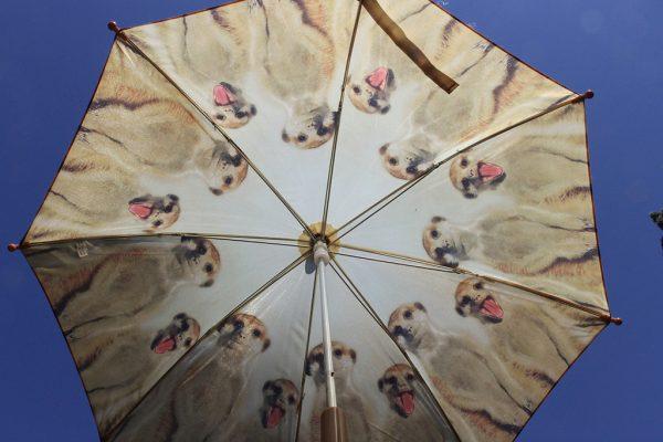 Szurikátás gyermek esernyő